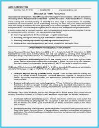 Shidduch Resume Impressive 6060 Shidduch Resume Template Lascazuelasphilly