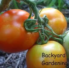better homes and gardens bath towels. garden ideas better homes and gardens bath towels privacy patio