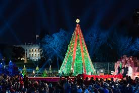 Giant Net Lights National Christmas Tree United States Wikipedia