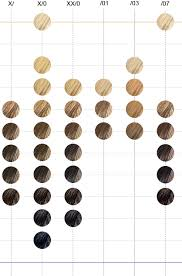 Wella Color Perfect Hair Color Chart Wella Color Tango Chart Www Bedowntowndaytona Com