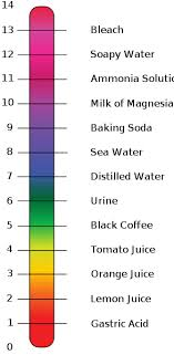 Acid And Base Chart Ph Chart For Acids And Bases Omg Just Went Over Acids And
