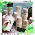 سبزیکار تولید کننده لیوان کاغذی