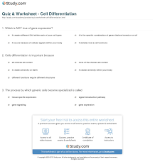 in addition All Grade Worksheets » 10 4 Cell Differentiation Worksheet Answers moreover  likewise All Grade Worksheets » 10 4 Cell Differentiation Worksheet Answers furthermore All Grade Worksheets » 10 4 Cell Differentiation Worksheet Answers together with 100    10 4 Cell Differentiation Worksheet Answers     Ncert as well Chapter13 worksheets besides 10 4 Cell Differentiation Worksheet Answers   Guillermotull furthermore PDF  10 4 cell differentiation worksheet answers  28 pages    cell moreover Long division worksheets for grades 4 6 besides Bill Nye the Science Guy Farming and soil conservation video. on 10 4 cell differentiation worksheet answers