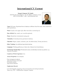 international format of cv sample resume for abroad application essential visualize