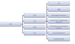 Accounting Position Hierarchy Chart Comprehensive Profile Of A Successful Cfo Pedersen