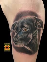 Tatuaggio Cane Immagini E Significato Ligera Ink Tattoo