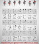 Упражнения в домашних условиях на все группы мышц