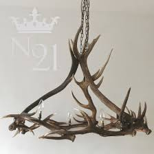 red deer antler chandelier