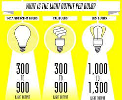 whats in a light bulb infographic