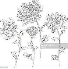 60点の菊のイラスト素材クリップアート素材マンガ素材アイコン素材