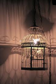 birdcage lighting. Vintage Bird Cage Lamp.or Add Some Greenery And String Lights Inside. There Is So Many Things You Can Do With These.You Even Take The Door Off Birdcage Lighting D