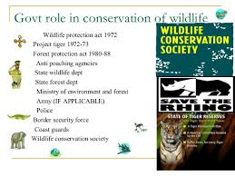 what are the steps taken for the conservation of wildlife government role in wildlife conservation