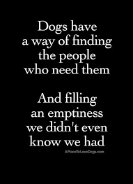 Quotes About A Girl And Her Dog Mesmerizing Quotes About A Girl And Her Dog Endearing Best 48 A Girl And Her Dog