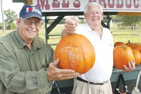 A good year for pumpkins - The Dispatch
