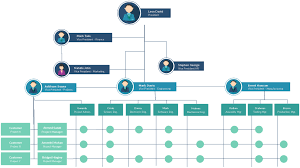 Management Company Structure Online Charts Collection