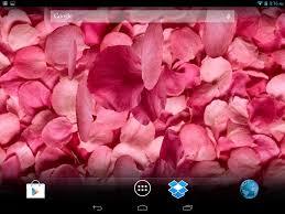 petals 3d live wallpaper for samsung gt s5830 galaxy ace