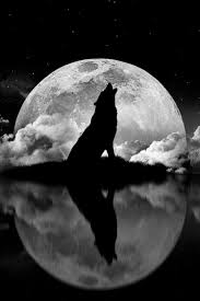 howling wolf moon drawing. Perfect Wolf Wolf Howling At The Moon  Sun U0026 Stars Pinterest Wolf  Tattoos And Howling In Drawing