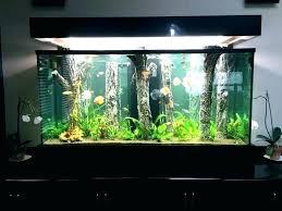 aquarium decoration ideas small aquarium decoration ideas at home co aquarium decoration ideas diy