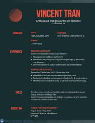 Cover Letter Good Resume Headline Examples Good Resume Titles
