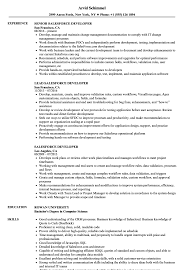 Salesforce Resume Sample Salesforce Developer Resume Samples Velvet Jobs 10