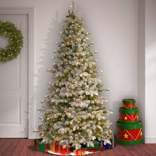 The Holiday Aisle Snowy Everest Frosted Green Fir Artificial Christmas Tree  with White Clear Light with Stand & Reviews | Wayfair