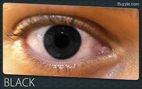Dark Brown To Light Brown Eyes Fascinating Facts About Rare Eye Colors