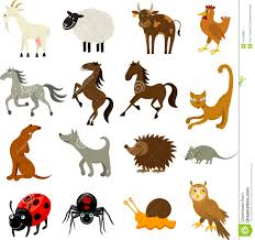 Farm And Domestic Animals Stock Vector Illustration Of