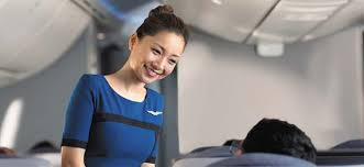 interview questions flight attendant united airlines flight attendant 60 interview questions for united