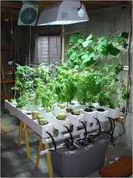 hydroponic herb garden. Indoor Hydroponic Herb Garden Kit Beautiful 15 Best Gardening Images On Pinterest