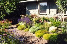 Garden Design Cottage Style Brenda Broughton Garden Design Simple Cottage Style Low