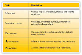 personality and values the big five personality traits