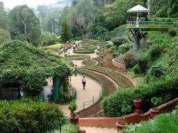 Kitchen Garden In India Government Botanical Gardens Ooty Wikipedia