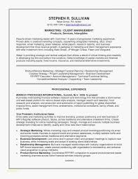 Example Of Executive Resume Inspiration Best Resumes Examples Elegant Executive Resume Examples Good Resume