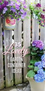 lovely garden container ideas from ordinary home gardens