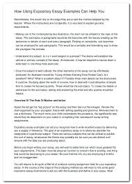 Examples Of Essays Introduction Examples Essay Introductions