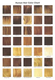 Cinnamon Hair Color Chart Nrc001hm Wig Style Human Hair Collection Louis Ferre Wigs