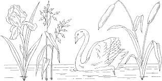 Small Picture Free Swan Coloring Pages
