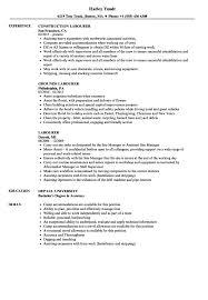 Sample Resume Laborer Construction Luxury Maintenance Worker
