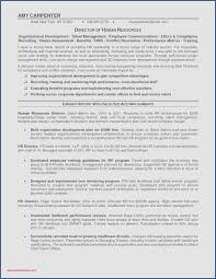 Promotion Resume Example Professional 15 Resume Examples For