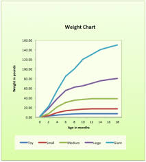 Presa Canario Weight Chart Presa Canario Puppy Weight Chart Dogsblog