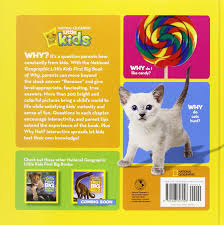 national geographic little kids first big book of why national geographic little kids first big books amazon co uk amy shields 9781426307928 books
