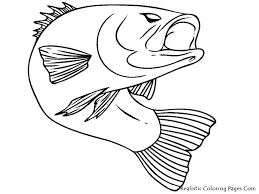 Small Picture Flying Fish Coloring Pages Coloring Coloring Pages