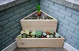 triangle-planted