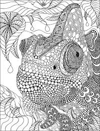 free zentangle coloring pages elegant 323 best zentangle art ideas and coloring book pages images on