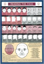 Chinese Medicine Face Reading Chart