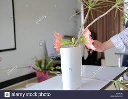 Teaching Floral Design Florist Arranging Flower Bouquet In Vase Teacher Teaching