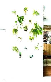 indoor hanging planter types of hanging plants hanging plants indoor indoor wall plant holders indoor hanging