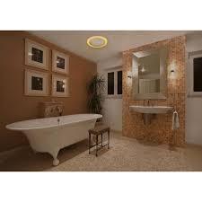 home netwerks 110 cfm ceiling mount