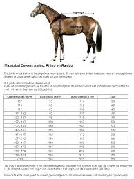 Tough 1 Blanket Size Chart Horse Blanket Chart Guarderiacanina Co