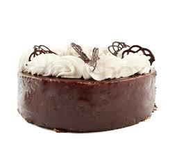 chocolate cake white background. Contemporary White To Chocolate Cake White Background